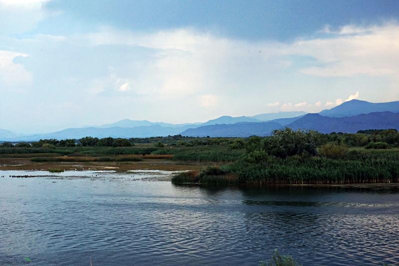 lago_Scutari