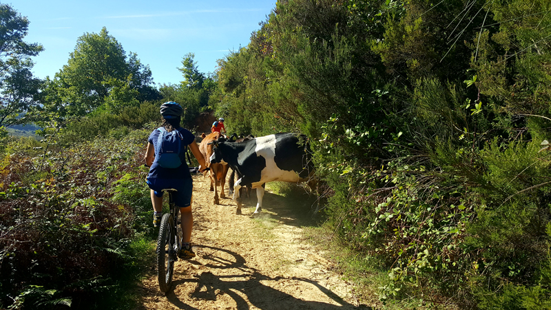 Vacanza attiva in Albania Mountaibike off road