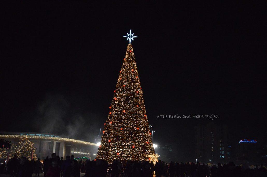 Capodanno in Albania_Albero di natale illuminato e addobbato in Piazza Skanderbeg a Tirana