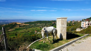 Vacanze in Albania itinerario Tirana