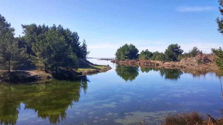 Viaggio in Albania, escursione al parco Divjaka